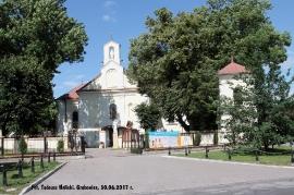 Grabowiec, 30 czerwca 2017 r. Fot. Tadeusz Halicki-25