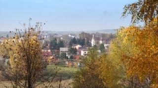 Fot. D. Kordyś-6