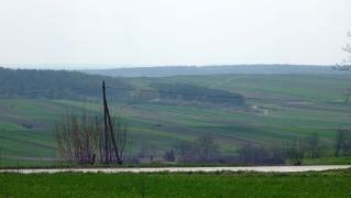 Fot. D. Kordyś-26